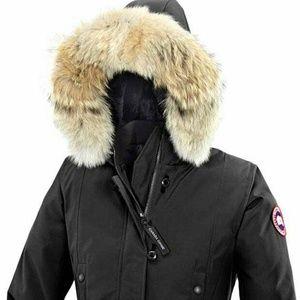 BNWT Canada Goose Kensington Parka jacket 2XS
